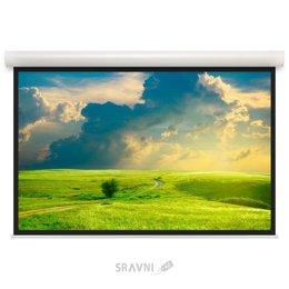 Экран Projecta Elpro Concept 139x240 (10103516)
