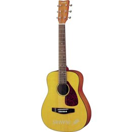 Акустическую гитару Yamaha JR1
