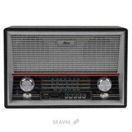 Радиоприемник Ritmix RPR-101